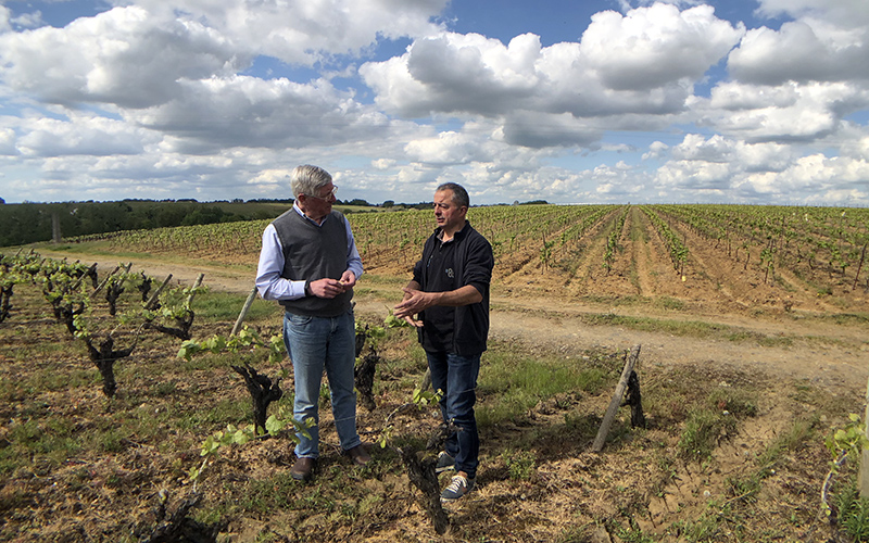 Christophe Martin, a winemaker in a vineyard in Gorges, Muscadet, Loire Valley, France.